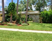 3625 Fairway Forest Circle, Palm Harbor image