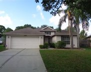 10280 Oasis Palm Drive, Tampa image