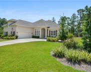2 Caladium Court, Hilton Head Island image