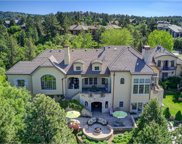 757 International Isle Drive, Castle Rock image