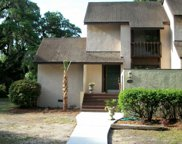 8 Peter Horry Ct. Unit 191, Georgetown image