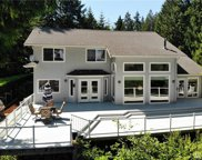 10915 Seaview Dr, Anderson Island image
