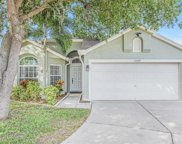 13729 Staghorn Road, Tampa image