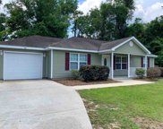 181 Dr Martin Luther King Jr, Crawfordville image