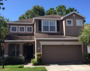 10602 Ashtead Wood Court, Tampa image