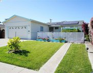 1157 Park Heights Dr, Milpitas image
