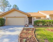 4065 Shoreside Circle, Tampa image