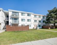 7260 Lindsay Road Unit 206, Richmond image