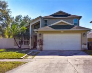 6102 Silkdale Court, Tampa image
