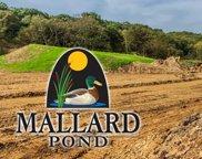 2009 Mallard Ln, Marshall image