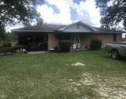 12385 Dutch Ford Rd, Metter image