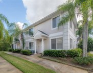 18179 Paradise Point Drive, Tampa image