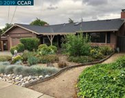 1230 S Rosal Ave, Concord image