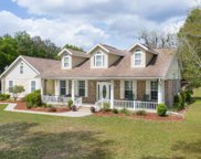 249 NW LIVE OAK PLACE, Lake City image
