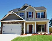 1091 Gregory Landing Drive, North Augusta image