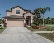 13250 Wellington Hills Drive, Riverview image