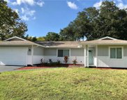 2131 Royal Palm Drive, Edgewater image
