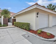 139 Old Meadow Way, Palm Beach Gardens image