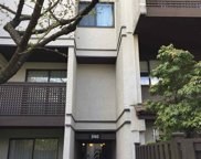 340 Ginger Drive Unit 411, New Westminster image