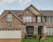 1018 Tanyard Springs Dr, Spring Hill image