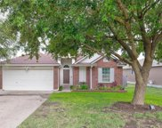 303 Estate Dr, Hutto image