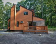 179 Lake Forest Dr, Dingmans Ferry image