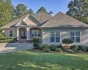 317 Lake Estate Drive, Chapin image