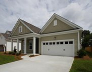 841 Longwood Bluffs Circle, Murrells Inlet image