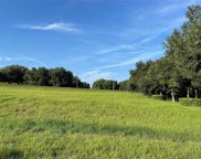18249 Great Blue Heron Drive, Groveland image