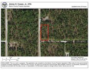 Sw 128th Terrace Rd, Dunnellon image