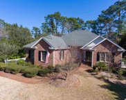 56 Red Tail Hawk Loop, Pawleys Island image