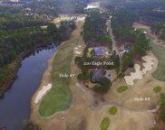 210 Eagle Point Lane, Southern Pines image