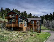 23401 Black Bear Trail, Conifer image