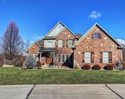 12563 Grandview Forest, St Louis image