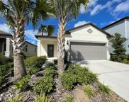 17521 Butterfly Pea Court, Clermont image