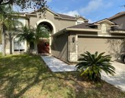 18154 Sandy Pointe Drive, Tampa image