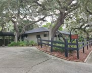 146 8th Avenue N, Safety Harbor image