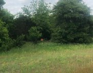 TBD Farm Road 1189, Bluff Dale image