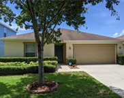 11141 Running Pine Drive, Riverview image