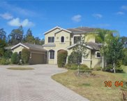 1515 Amarone Place, Lutz image
