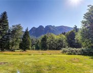 10724 428th Ave  SE, North Bend image