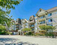 12083 92a Avenue Unit 319, Surrey image