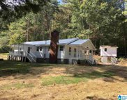 3155 Roberts Mill Pond Road, Pell City image
