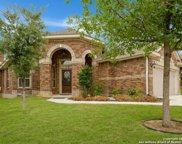 11231 Butterfly Bush, San Antonio image