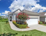 17455  Hawks View Drive, Indian Land image