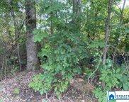 5402 Pine Rd Unit 5 Acres, Pinson image