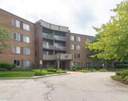 909 East Kenilworth Avenue Unit 417, Palatine image