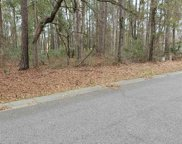 22-C Grey Fox Loop, Pawleys Island image