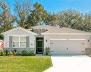 12422 Eastpointe Drive, Dade City image