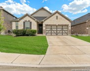 11131 Hill Top Bend, Helotes image